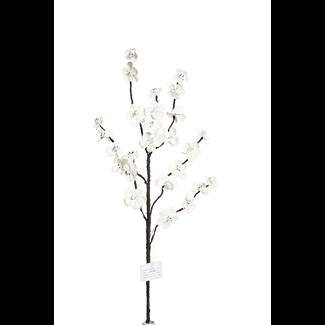 Apple Blossom Branch (2 stem) - White