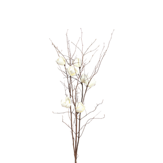 Magnolia Branch (3 stem) - White