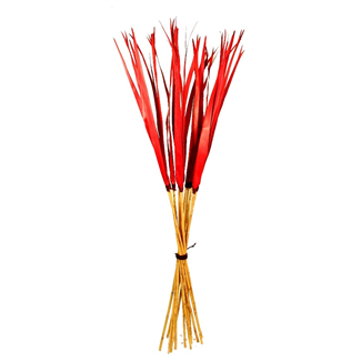 Sunpalm on Bamboo - Red