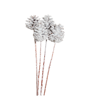 Pine Cones Regular (3 stem) Snow