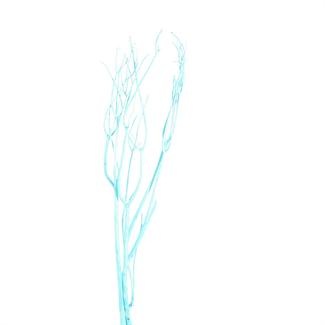 Mitsumata (3 pcs) Blue