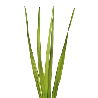 Sunpalm Leaves (7 stem) Spring Green