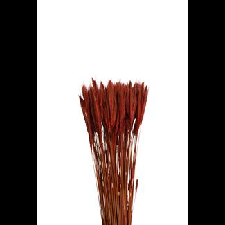 Rye (6 oz) Mahogany