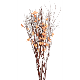 Blooming Blossom Branches - Orange