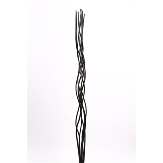 Corkscrew Willow (8 pcs) Black