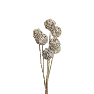 Lata balls- 6 cm (10 stem) Champagne Glitter