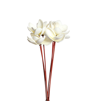 Magnolia Flowers on stem (6 st) Cream