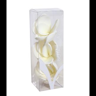 "Magnolia in Mini Box 9""  (3 pcs)"