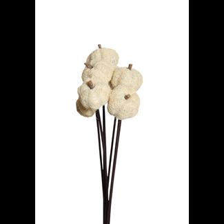 Fiber Pumpkins (8 stem) White