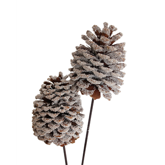 Jeffrey Pine Cones X-Large (3 stem) Snow