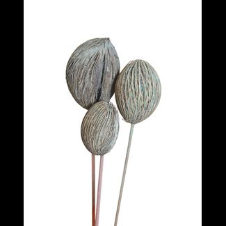 Mintola Balls (3 stem) Aqua Wash