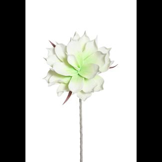 """Foam Magnolia Flower on stem (10"""") Light Green/White"""