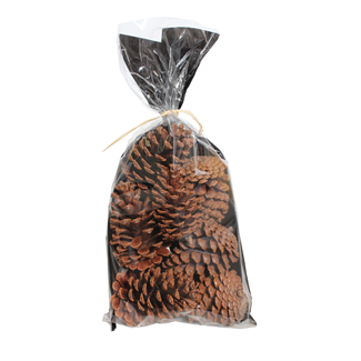 Pine Cones in a bag medium (7-9 pcs) - natural