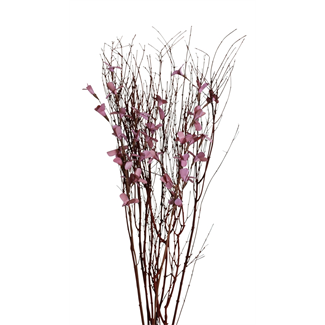 Blooming Blossom Branches - Purple
