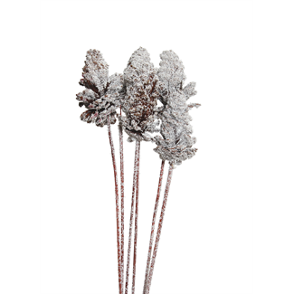 Pine Cones Medium 7-10cm (4 stem) Snow