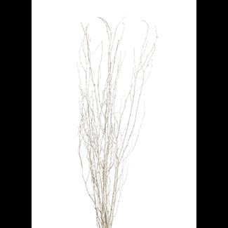 "Twinkly Twigs 48"" (5-7 stem) Champagne Glitter"