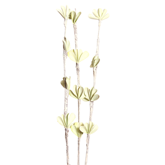 Palm Chip (3 stem) White Washed Green