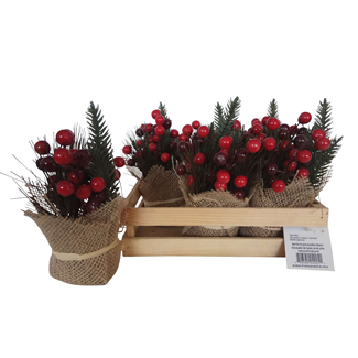 Natural Berries & Pine Bundles in Wooden Box (6 pcs)