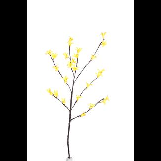 Forsythia (2 stem)