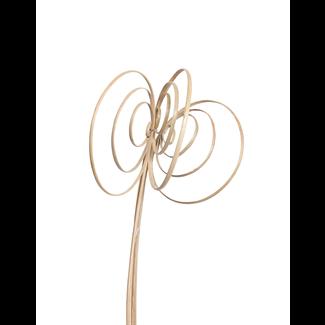 Jumbo Cane Circles (6 stem) Natural