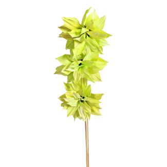 Dahlia Flower (3 stem) Green