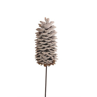 Sugar Pine Cone (1 stem) Snow