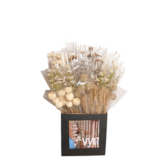 Displayer - everyday mixed displayer- 50 pack