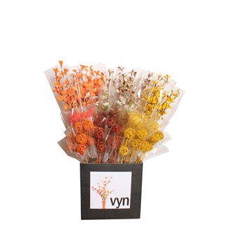 Displayer - fall mixed displayer- 50 pack