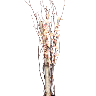 Everyday Urn Kit - Pink & White Blossom