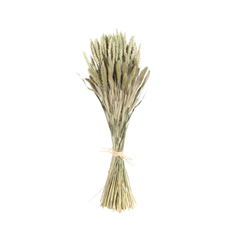 Mixed Sheaf - natural