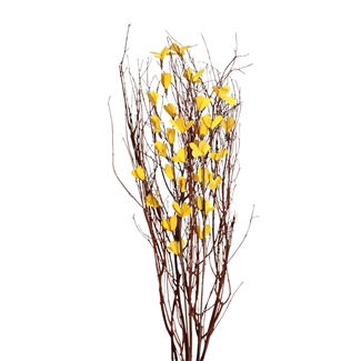 Blooming Blossom Branches - Yellow