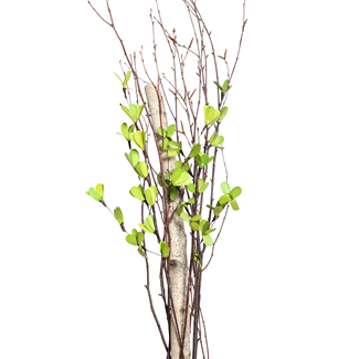 Everyday Urn Kit - Green Blossom