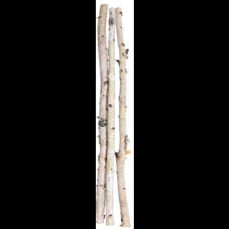 Birch Poles - 6 ft