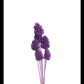Pine Cones Medium 7-10cm (8 stem) Purple glitter