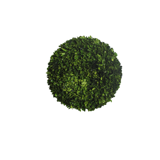 Topiary - Boxwood ball - 40 x 40 x 40 cm