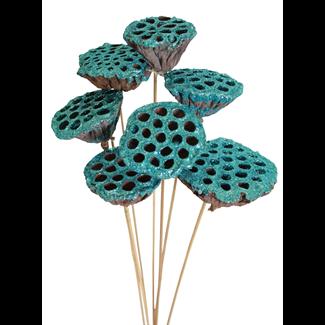 Lotus pods (7 stem) Ice blue glitter