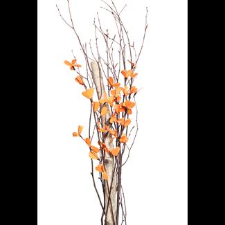Everyday Urn Kit - Orange Blossom