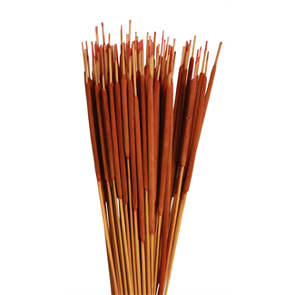 Cattails Pencil (100 pcs) Orange