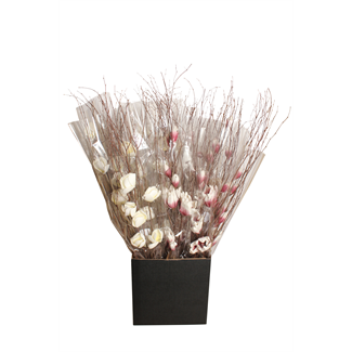 Displayer - Magnolia Branch (1 stem) Purple/White & White (pk 25)