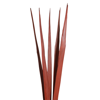 Sunpalm Leaves (7 stem) Mahogany