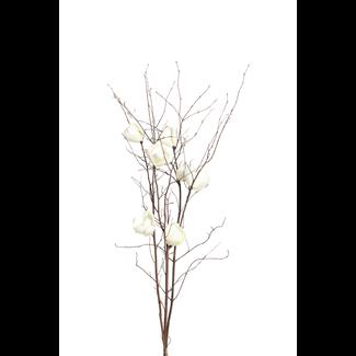 Magnolia Branch (3 stem) - White
