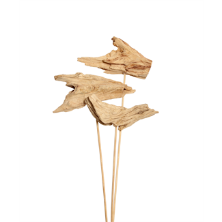 Driftwood (3 stem) Bleached