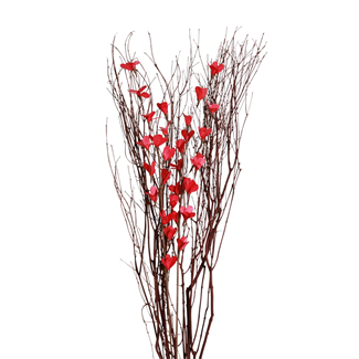 Blooming Blossom Branches - Red