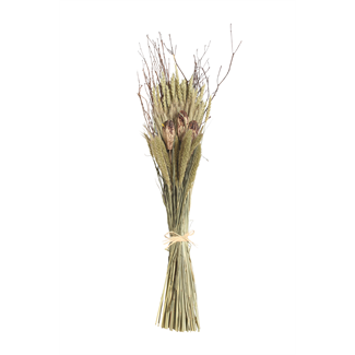 "28""mixed  Sheaf- natural with branches"
