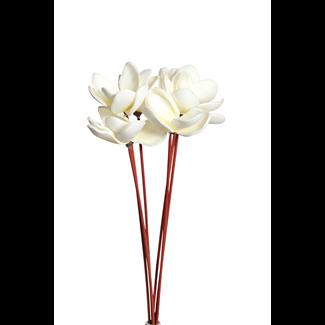 Magnolia Flowers on stem (6 st) Cream