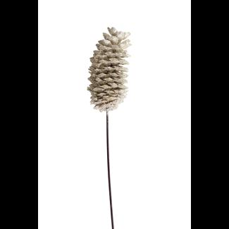 Sugar Pine Cone (1 stem) Champagne Glitter