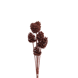 Pine Cones Medium 7-10cm (8 stem) Chocolate glitter