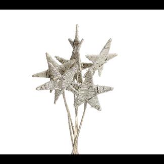 Lata Star 15cm (6 pcs) - Champagne Glitter