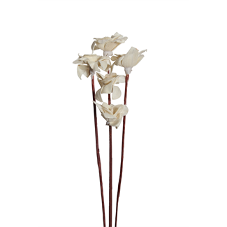 Sola Luppa Rose (5 stem) 6cm