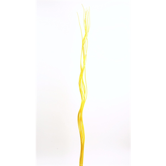 Wavy Willow (10 pcs) Yellow